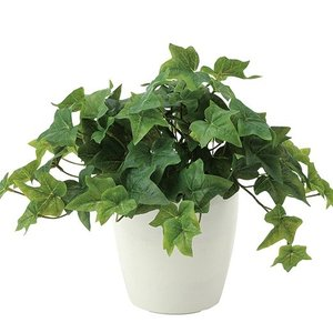 造花・観葉植物/フレッシュアイビー30cm 光触媒(空気浄化)  インテリア・フェイク鉢植え  639A5046-16|goodfellow