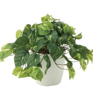 造花・観葉植物/フレッシュポトス 30cm 光触媒(空気浄化)  インテリア・フェイク鉢植え  641A5046-16|goodfellow