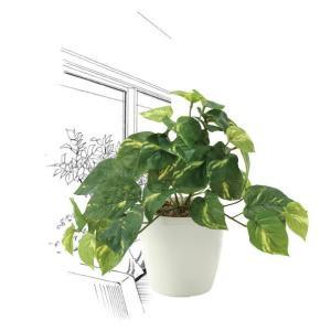 造花・観葉植物/フレッシュポトスS 25cm 光触媒(空気浄化)  インテリア・フェイク鉢植え  642A3546-16|goodfellow