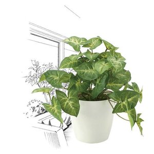造花・観葉植物/フレッシュカラージュームS 25cm 光触媒(空気浄化)  インテリア・フェイク鉢植え  644A3546-16|goodfellow