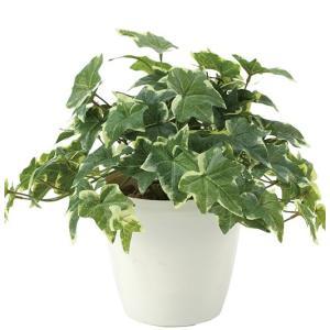 造花・観葉植物/フレッシュ斑入りアイビー 30cm 光触媒(空気浄化)  インテリア・フェイク鉢植え  645A5046-16|goodfellow