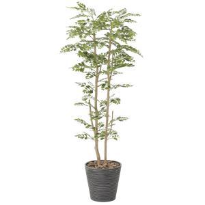 造花 観葉植物 ゴールデン・ツリー160cm 光触媒 空気清浄 インテリア グリーン 鉢植え|goodfellow