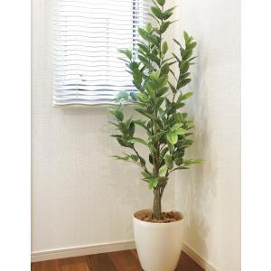 造花 観葉植物 レモン160cm 光触媒 空気清浄 インテリア グリーン 鉢植え|goodfellow