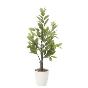 造花 観葉植物 レモン100cm 光触媒 空気清浄 インテリア グリーン 鉢植え|goodfellow