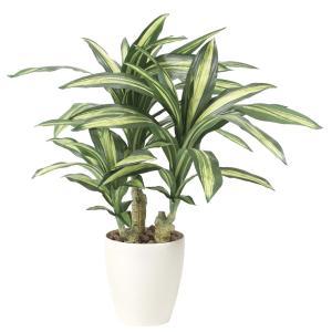 造花 観葉植物 幸福の木60cm 光触媒 空気清浄 インテリア グリーン 鉢植え|goodfellow