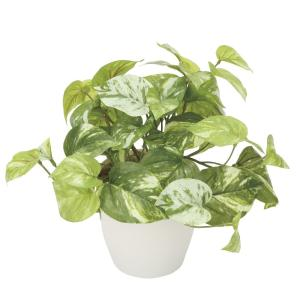 造花 観葉植物 「マーブルポトス」 光触媒 空気清浄 インテリアグリーン 61|goodfellow