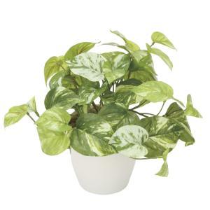 造花 観葉植物 ポトス(マーブルクイーン) 光触媒 空気清浄 インテリア植物 あすつく 送料無料|goodfellow