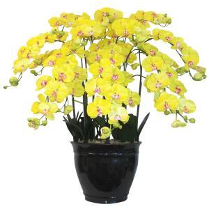 胡蝶蘭 鉢植 L(大)サイズ 7本立 黄色 造花 光触媒(空気清浄) アートフラワー|goodfellow