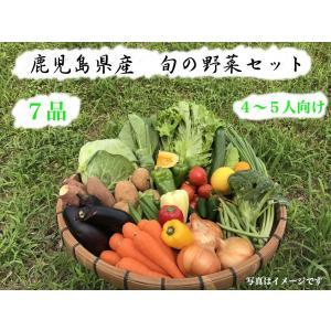 減農薬・無化学肥料 旬のお野菜7品セット (送料500円) goodfieldllc