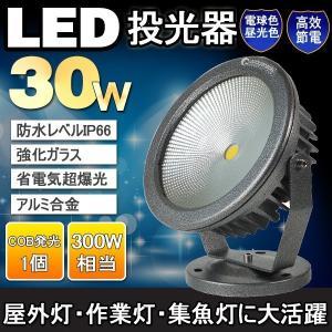 ガーデンライト 庭園灯 玄関照明 LEDライト LED投光器 30W 300W相当 防水 集魚灯 作業灯 看板照明 店舗照明 昼光色/電球色 一年保証 goodgoods-2