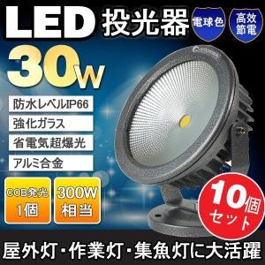 10個セット  一年保証 LED投光器 30W 300W相当 ガーデンライト 庭園灯 屋外照明 看板照明 景観照明 ledライト 昼光色/電球色|goodgoods-2