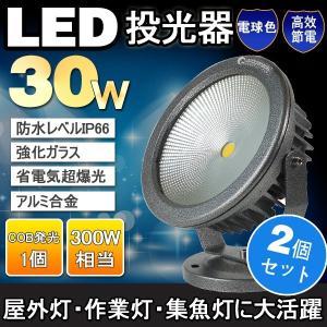 2個セット  LED投光器 30W 300W相当 COBタイプ LED投光器 ライトアップ 街灯 玄関常夜灯 樹木照明 風景ランプ 屋内 屋外|goodgoods-2