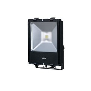 【訳あり】 日動工業 LEDエコナイター70 昼白色 LEN-70D-ES-W 50/60hz|goodjobtools