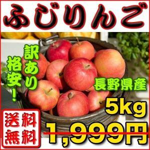 りんご 訳あり 約 5kg 長野県産 ふじりんご 送料無料 ...