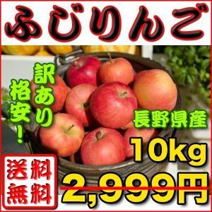 りんご 訳あり 約 10kg 長野県産 ふじりんご 送料無料...