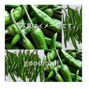 *韓国食品*【クール便・冷蔵】青唐辛子(辛口) 100g 【代引不可】 goodmall-japan