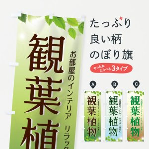 のぼり旗 観葉植物|goods-pro