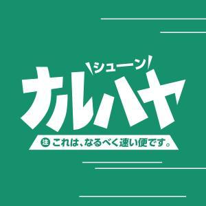 のぼりのナルハヤ便 翌日配送オプション|goods-pro