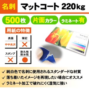 一般名刺 500枚 片面 マットコート220kg ラミネート有り|goods-pro