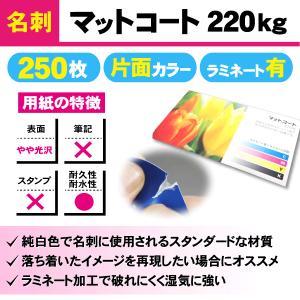 一般名刺 250枚 片面 マットコート220kg ラミネート有り|goods-pro