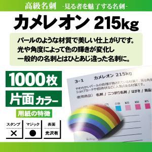 高級名刺 1000枚 片面 カメレオン215kg|goods-pro