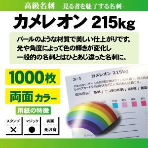高級名刺 1000枚 両面 カメレオン215kg|goods-pro