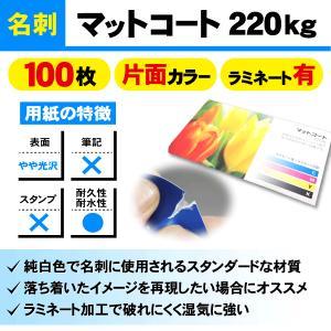一般名刺 100枚 片面 マットコート220kg ラミネート有り|goods-pro