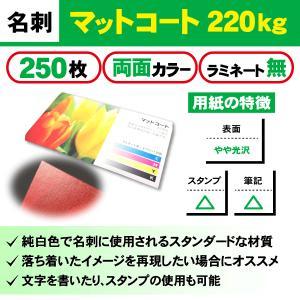 一般名刺 250枚 両面 マットコート220kg ラミネート無し|goods-pro