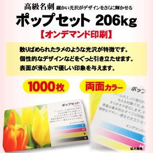 高級名刺 1000枚 両面 ポップセット206kg|goods-pro