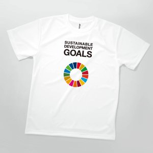 Tシャツ SDGs 英語 SUSTAINABLE DEVELOPMENT GOLDS|goods-pro