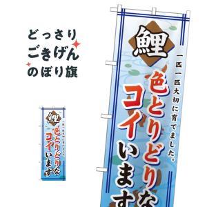 鯉 のぼり旗 GNB-590|goods-pro
