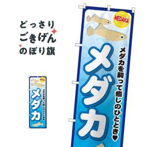 メダカ のぼり旗 GNB-2492|goods-pro