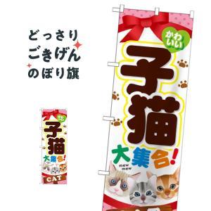 子猫大集合 のぼり旗 GNB-554|goods-pro