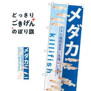 メダカ のぼり旗 GNB-571|goods-pro