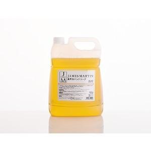クーポン発行中 ポイント11倍 ジェームズマーティン 薬用泡ハンドソープ(無香料)詰替用5kg医薬部外品
