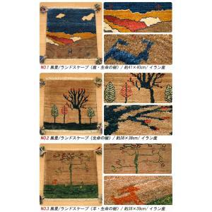 シラーズ 40ミニサイズ 天然ウール 手織り 椅子用 マット 座布団 約41×40cm ギャッベ/ イラン産 ラグ ギャベ アート プレミアム ペルシャ絨毯