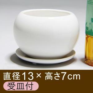 植木鉢/おしゃれ/陶器鉢/ポッコリ 丸型/4号/鉢カバー/受皿付/白  注:実物は写真よりも口径が少...
