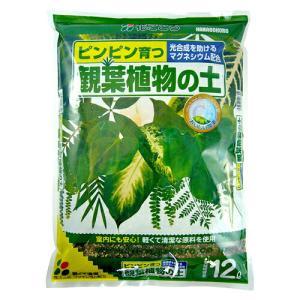 観葉植物の土 12L〔リットル〕【花ごころ】...