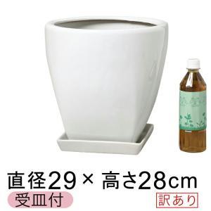【訳あり】 ツルツル 上丸下角型 陶器鉢 白 ホワイト つや有 M 29cm 11リットル 受皿付 ...