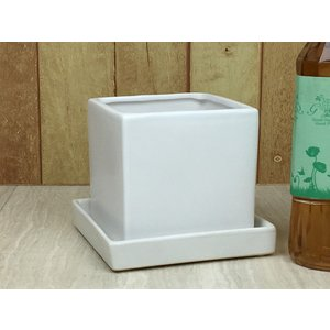 植木鉢 陶器鉢 正方形 サイコロ 受け皿付 鉢皿付 ホワイト マット  直径11cm 高さ11cm ...