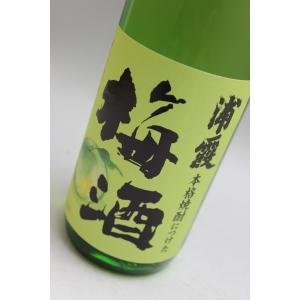 浦霞 本格焼酎につけた梅酒720ml[クール便]|gosenya