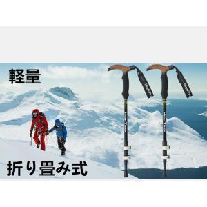 ポール ステッキ 登山 登山杖 登山用品 山登り ハイキング ウォーキング スティック T型|goshu-kiki