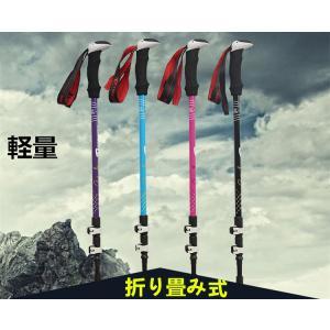 ポール ステッキ 登山 登山杖 登山用品 山登り ハイキング ウォーキング スティック I型|goshu-kiki