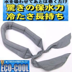 熱中症対策グッズ Eco-Cool 熱中症予防 暑さ対策グッズ gotogiya