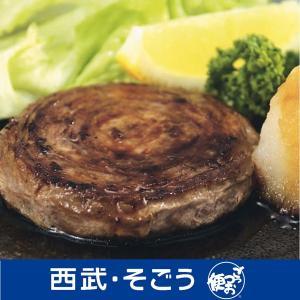山形 平田牧場 日本の米育ち 三元豚 ハンバーグ ロールステーキ
