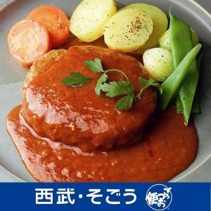 お中元 岐阜 肉のひぐち 飛騨牛煮込みハンバーグ