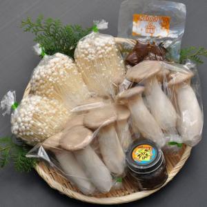 鳥取県産 きのこ詰め合わせギフト(中) 北村きのこ園 要冷蔵 他のメーカー商品との同梱不可|gottuou-tottori
