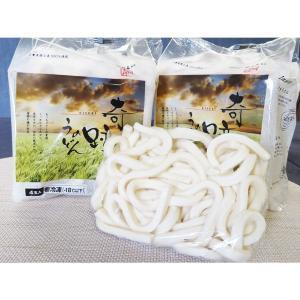 奇跡のうどん 12玉【太麺タイプ】 冷凍でおとどけ もっちりとした食感|gourmet-kineya