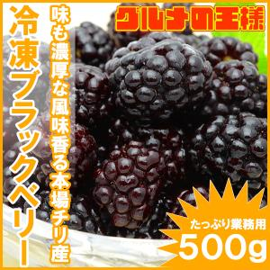 ブラックベリー 冷凍ブラックベリー 500g×1 冷凍フルーツ ヨナナス|gourmet-no-ousama