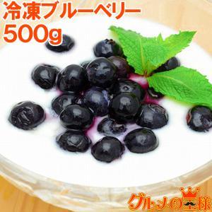 ブルーベリー 冷凍ブルーベリー 500g×1 冷凍フルーツ ヨナナス